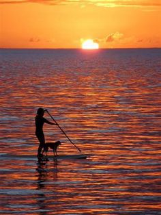 Sunset on the Water. Pup and SUP! #YachtWorldCharters #YWC