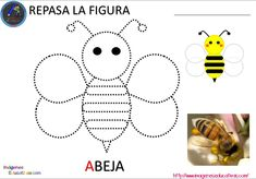 Crafts,Actvities and Worksheets for Preschool,Toddler and Kindergarten.Free printables and activity pages for free.Lots of worksheets and coloring pages. Bee Activities, Blended Learning, Pre Writing, Bugs And Insects, Activity Sheets, Busy Book, Kindergarten Worksheets, Coloring Pages, Preschool