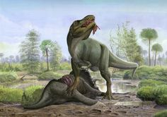 Tyrannosaurus Rex and Triceratops prorsus. Two of the last great dinosaurs, both discovered in Canada