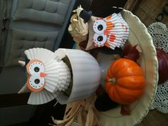 Halloween owl craft from toilet paper rolls