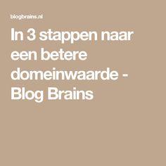 In 3 stappen naar een betere domeinwaarde - Blog Brains