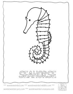 Free Seahorse Coloring Page Collection at www.wonderweirded-wildlife.com/free-seahorse-coloring-page.html, Realistic Seahorse Picture to Color, Ocean Activities for Kids free to print