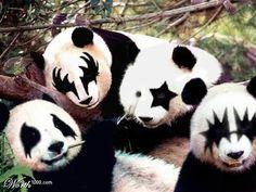 Pandaッス