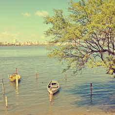 #Recife #Skyline #Sea #River #Boat #City