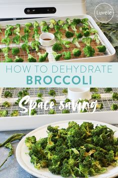 How to dehydrate broccoli for storage Frozen Broccoli, Fresh Broccoli, Super Green Smoothie, Dried Vegetables, Hiking Food, Salad Spinner, Gaps Diet, Super Greens, Dehydrator Recipes