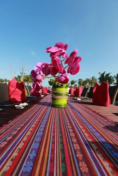So colorful, so beautiful!  #SanyaCaption #SanyaHeartstoHearts