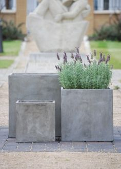 Cube planters 300,400 and 500? Polished plaster effect. Fill with concrete = plinth