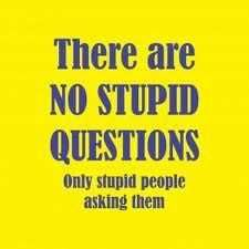 quotes about stupid questions - Google Search