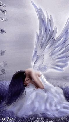 Don't cry pretty angel.  You don't need to beg forgiveness.  Get up and use your wings and fly high again.  Don't let your losses hold you down to Earth when you can reach the heavens.