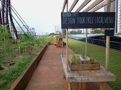 Sao Paulo's Urban Garden is a Green Paradise in the Center of ...