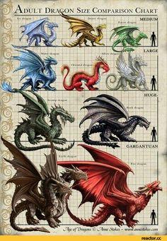 дракон,Мифические существа,Fantasy,Fantasy art,art,арт,красивые картинки
