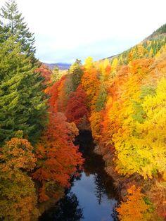 Scotland in Autumn. 25 Unusual & Fun Things to Do in Scotland: http://www.europealacarte.co.uk/blog/2010/12/30/things-to-do-in-scotland/