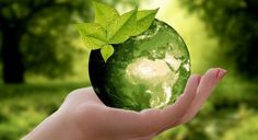 Why is a green earth a necessity for the survival of life? Read more to know about the importance of green earth and green technology. Ian Somerhalder Foundation, Prevent Arthritis, Arthritis Relief, Take Out Containers, Green Earth, Happy Earth, Natural Resources, Mother Earth, Mother Nature