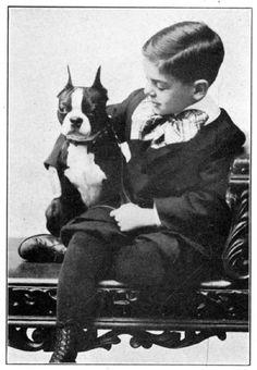 Boston History - SweetSummer's Boston Terriers