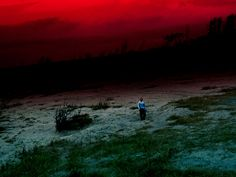 "Juxtapoz Magazine - ""In the Wake: Japanese Photographers Respond to 3/11"" @ Museum of Fine Arts, Boston"