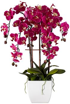 """Potted White Ceramic 12"""" High Faux Fuchsia Orchid - Lamps Plus    A great splash of color"""