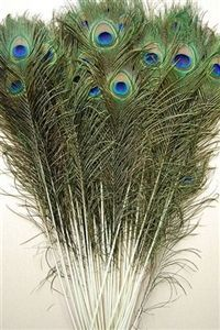 new deals! Shop our best value Peacock Feather Centerpieces on AliExpress. Check out more Peacock Feather Centerpieces items in Home & Garden, Apparel Accessories! And don't miss out on limited deals on Peacock Feather Centerpieces! Colorful Feathers, Peacock Feathers, Peacock Print, White Feathers, Nature Crafts, Decor Crafts, Feather Centerpieces, Wedding Centerpieces, Wedding Decorations