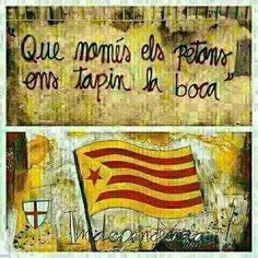 Que només els petons ens tapin la boca! Ok Boomer, Catalan Independence, Turu, Image Cat, The Real World, Oppression, Cool Pictures, Diy And Crafts, Poster Prints