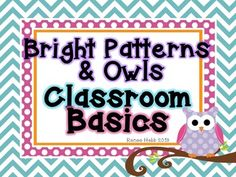 Bright Patterns & Owls Classroom Decoratives Set