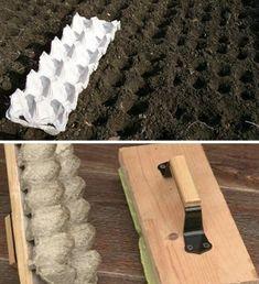 Vegetable Garden Ideas - New ideas