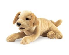 Plush animals have been used in modern dementia care with excellent results showing improved physical, social, emotional, motivational and cognitive functioning of persons with Alzheimer's and #dementia. This Labrador Puppy Puppet available in our online store is poised in a relaxed position featuring silky soft fur and a moveable mouth and front paws. Order yours online today: https://www.stopdementia.com.au/product/sensory/yellow-labrador-puppet/