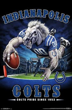 The Indianapolis Colts Pride Poster hangs perfectly in any bedroom, man-cave, office and den for any Colts fan. Officially Licensed through NFL Measures High Quality - Crystal Clear Image Printed on FSC-Certified Paper at FSC-Certified Printers Nfl Football Teams, Football Art, Football Memes, Sports Memes, Nfl Sports, Broncos Memes, Football Posters, Sports Posters, Vintage Football