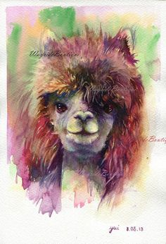 alpaca watercolour artwork - Google Search