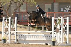 Click to see what Robert Gage had to say about this rider's equitation!