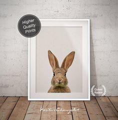 Nursery Woodland Rabbit Woodland Rabbit Print Nursery Bunny
