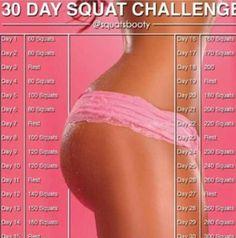 Edition the squat pdf gym challenge