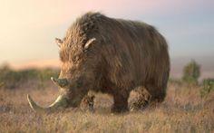 Wooly Rhino - Ice Age Giants
