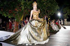 Dolce & Gabbana Alta Moda Fall 2015 Collection