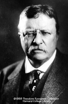 In honor of President's Day... Teddy Roosevelt, 1916.