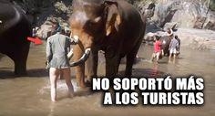 Una turista estaba disfrutando del viaje de su vida, pero cuando quiso estar cerca de un elefante explotado para el turismo, este le dio una dolorosa lección que nunca olvidará.