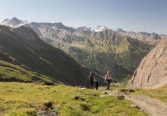 East Tyrol: explore nature above the tree line with an experienced ranger, away from the everyday noise. #austriantime