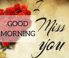Looking for Beautiful Good Morning Images? Check out our collection of Beautiful HD Images, Photos, Pics, Wishes and Greetings to send on Whatsapp for Free. Good Morning Miss You, Good Morning Couple, Romantic Good Morning Messages, Lovely Good Morning Images, Good Morning Love Messages, Good Morning Roses, Good Night I Love You, Morning Love Quotes, Good Morning Picture