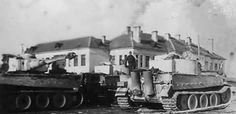 Tiger1 PanzerAbteilung 502 Easternfront