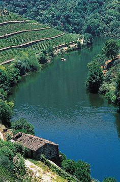 Douro Valley #PortW