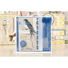 Add the beauty of wildlife to your crafting projects with the Pollyanna Pickering Sketch Book Chapter One Garden Birds CD ROM from Creative Crafting World! Craft Projects, Projects To Try, Garden Birds, Chapter One, Create And Craft, Pet Birds, Wildlife, Greeting Cards, Sketch