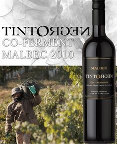 "TintoNegro Co-Ferment Malbec 2010 - 91 points  ""As dark as its name suggests (Negro is Spanish for ""black""), this is an intriguingly luscious wine... Malbec is, of course, one of Bordeaux's classic blending grapes, and in this case the ""Co-Ferment"" is dominated by Malbec... The wine is intense and beautifully structured, with enticing floral aromas, beautifully ripe fruit, and soft tannins."" -Marguerite Thomas, Wine Review Online 11/6/12"