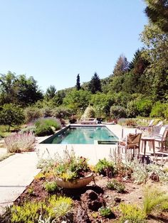 pool-yard by harriett