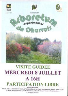 Visite guidée de l'arboretum de  juillet Charvols (Malvières) - mercredi 8 juillet 2015