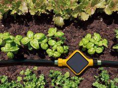 Même lorsque l'on n'a pas la main verte, il est possible d'obtenir un jardin verdoyant pour longtemps. De nombreux objets connectés, capteurs et stations météo, permettent aujourd'hui de ... #maisonAPart