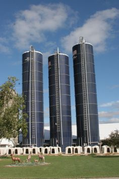 Growing up, having a Harvestore silo (or silos!) was considered a mark of a very successful farmer!