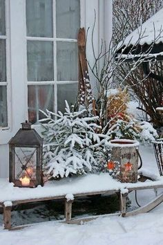 Pretty Colorful Winter Plants And Christmas For Frontyard Decoration Ideas - Andaziyar Christmas Scenes, Noel Christmas, Country Christmas, Outdoor Christmas, Winter Christmas, Country Winter Decorations, Christmas Decorations, Holiday Decor, Vibeke Design