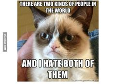 Pin Grumpy Cat Hates Winter Picture on Pinterest