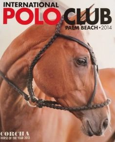 Palm Beach- Florida - Polo Club