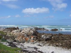Agulhas Cape - the southest place of Africa