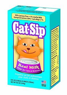 #Cats #CatHarnesses #CatLeashes #CatMuzzles #CatIDTagsCollarAccessories #CatCratesKennels #CatDogHouses #CatKennelCovers #CatOutdoorPens #CatDoorbells #CatDoors #CatGates #CatPlaypens #CatSafetyRamps #CatAutomaticFeeders #CatBowls #CatFeedingMats #CatFoodStorage #CatFountains #CatNursingSupplies #CatRaisedBowlsFeedingStations #CatTravelBowls #CatWaterBottles #CatFleaTickCollars #CatFleaCombs #CatDogFleaPowders #CatFleaDrops #CatTickRemoverTools #CatCarpetFleaPowdersSprays #CatFleaShampoos…