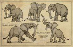 Super how to draw elephant character design references 54 ideas Elephant Sketch, Elephant Art, African Elephant, Animal Sketches, Animal Drawings, Animation Reference, Art Reference, Elephant Anatomy, Disney Elephant